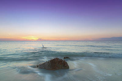 Photograph - A Naples Sunset by Christopher L Thomley