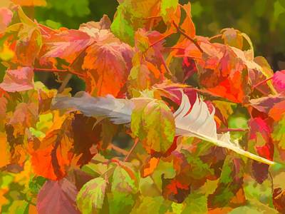Digital Art - A Natural Autumn Still Life With A Cluster Of Colorful Fall Leav by Rusty R Smith