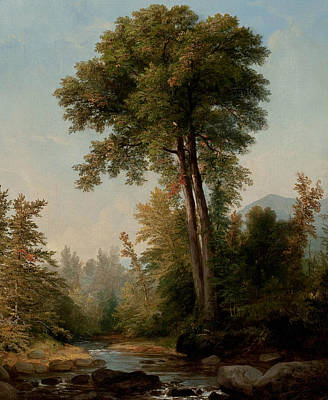 American Landscape Artist Painting - A Natural Monarch by Asher Brown Durand
