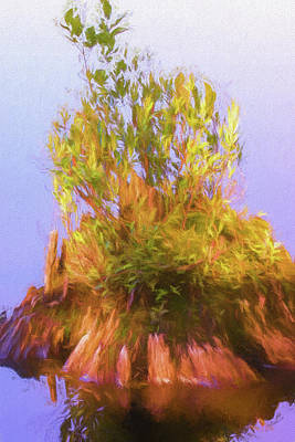 Photograph - A Natural Still Life Of Vegetation On An Old Stump In The Water by Rusty R Smith
