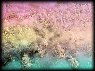 Digital Art - A Nature Abstract by Rusty R Smith