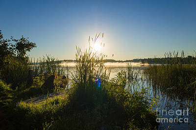 Photograph - A New Beginnning by Ismo Raisanen