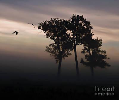 Photograph - A New Dawn by Elizabeth Winter