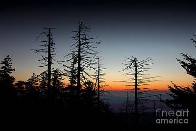 Photograph - A New Dawn Warms The Horizon by Mike Eingle