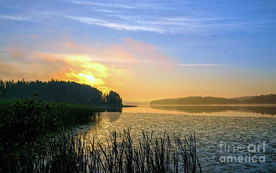 Photograph - A New Day Is Dawning by Ismo Raisanen