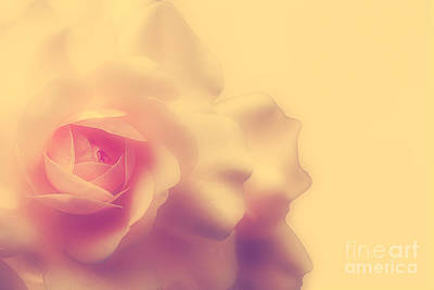 Peach Digital Art - A New Day by Lois Bryan