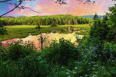 Digital Art - A New England Bog. by Rusty R Smith