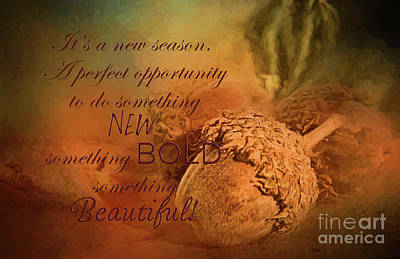 New Years - A New Season by Pam  Holdsworth
