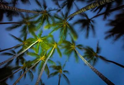 Tree Photograph - A Night On The Beach by Thorsten Scheuermann