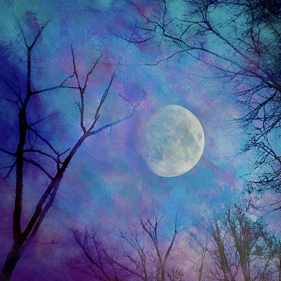 Moon Photograph - A Night To Remember by Rick Grossman