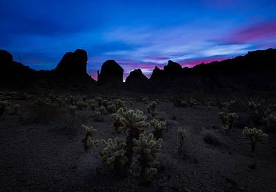 Photograph - A Nights Dream  by Tassanee Angiolillo