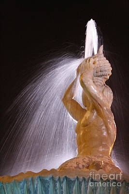 Photograph - A Nighttime Shower by Wilko Van de Kamp
