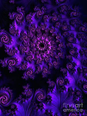 Digital Art - A Nine Of Roses / Deep Purple by Elizabeth McTaggart