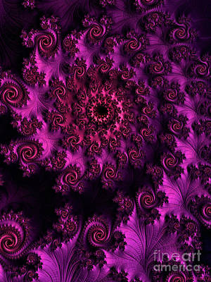 Digital Art - A Nine Of Roses / Magenta Glow by Elizabeth McTaggart