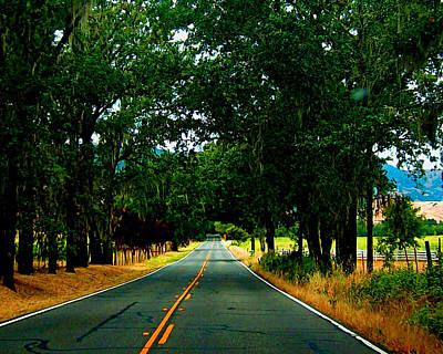 Digital Art - A Nor Cal Country Road by Joseph Coulombe