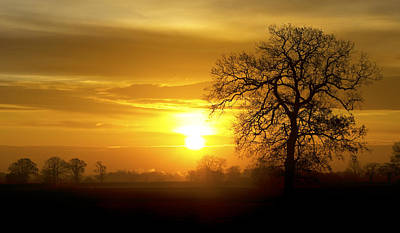 A Norfolk Sunrise Art Print by Darren Burroughs