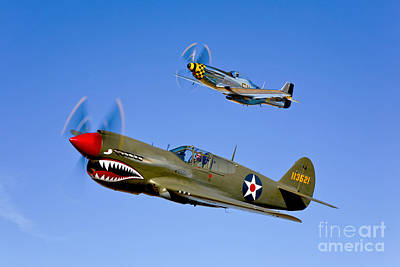 Us Army Fighters Photograph - A P-40e Warhawk And A P-51d Mustang by Scott Germain