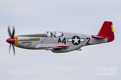 Landmarks Royalty Free Images - A P-51 Mustang Flies By At Eaa Royalty-Free Image by Rob Edgcumbe