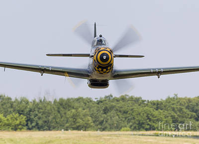 A P-51 Mustang Flies By At East Troy Art Print