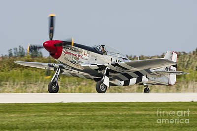 Landmarks Royalty Free Images - A P-51 Mustang Taxiing At Cleveland Royalty-Free Image by Rob Edgcumbe