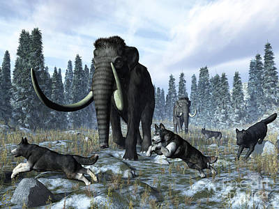 Prehistoric Era Digital Art - A Pack Of Dire Wolves Crosses Paths by Walter Myers