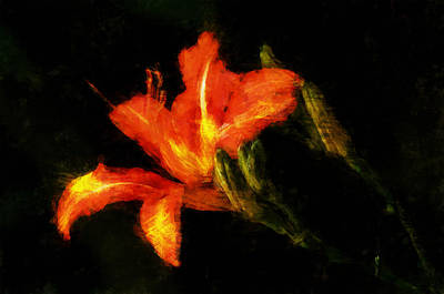 Digital Art - A Painted Lily by Cameron Wood