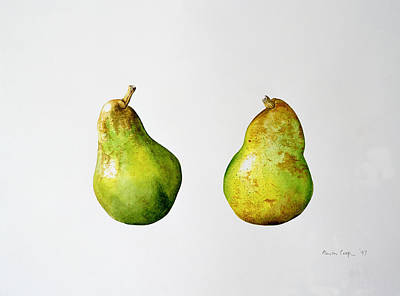 Fruit Painting - A Pair Of Pears by Alison Cooper
