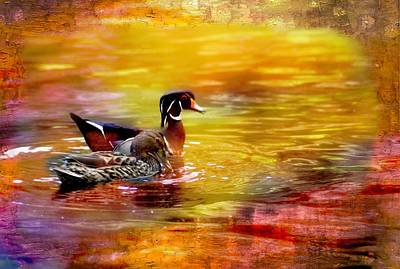 Digital Art - A Pair Of Wood Ducks Swimming Together. by Rusty R Smith