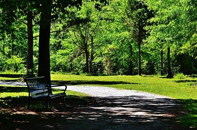 Photograph - A Park Resting Place by Eileen Brymer