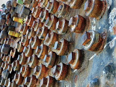 Photograph - A Party Of Rust by Jeannie Bushman