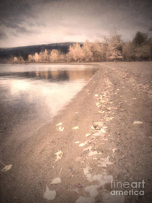 Photograph - A Pastel Afternoon by Tara Turner