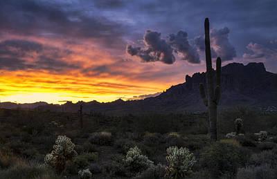 Photograph - A Pastel Desert Sunrise  by Saija Lehtonen