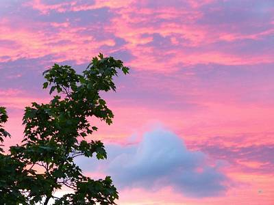 Photograph - A Pastel Pink Sunset by Will Borden