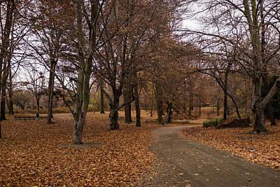 Photograph - A Path Forward by Cornelis Verwaal