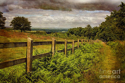A Path From  A Hill Art Print by Linsey Williams