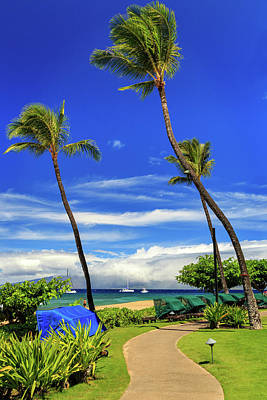 A Path In Kaanapali Art Print by James Eddy
