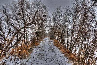 Photograph - A Path Less Traveled by J Laughlin