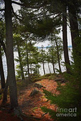 Photograph - A Path To The Point by Skip Willits