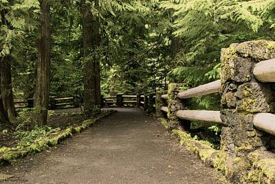Photograph - A Pathway To Sahalie Fall - 1 by Hany J