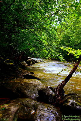 Photograph - A Peaceful Place by Lisa Wooten