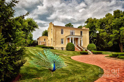 George Washington Digital Art - A Peacock At Beallair by Lois Bryan