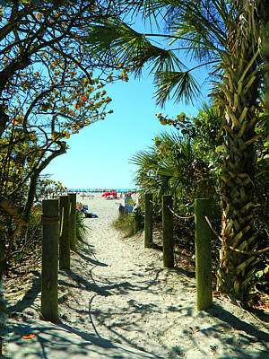 Photograph - A Peak At Siesta Beach by Emmy Vickers