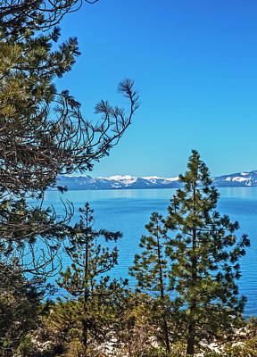 Photograph - A Peek At Tahoe Through The Trees by Nancy Marie Ricketts