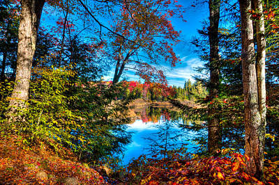 Autumn Photograph - A Peek At The Moose River In Fall by David Patterson