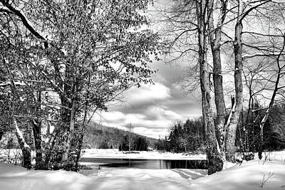 Photograph - A Peek At Winter by David Patterson