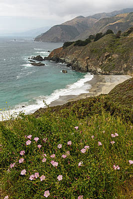 Photograph - A Peek Of California Pacific Coast Highway by Willie Harper