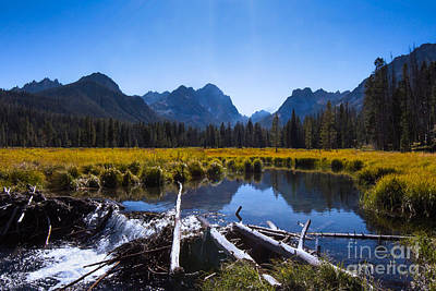 Photograph - A Peek Of The Sawtooths Idaho Landscapes By Kaylyn Franks by Omaste Witkowski