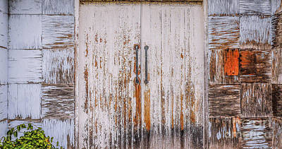 Photograph - A Peeling Patchwork  by Lexa Harpell