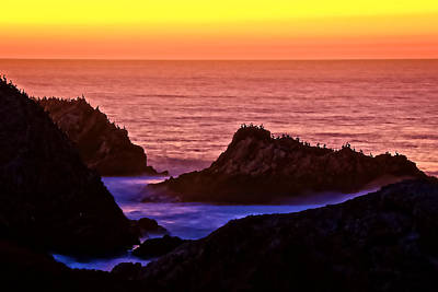 Photograph - A Pelican Sunset, Point Lobos State Preserve, California by Flying Z Photography by Zayne Diamond
