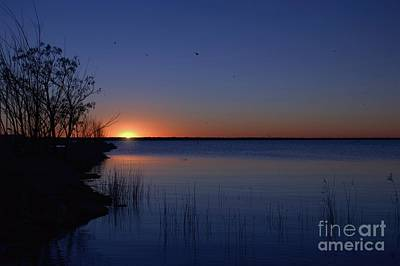 Photograph - A Piece Of My Soul by Diana Mary Sharpton